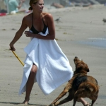 Dog Trivia | Interesting Facts and Dogs | Funny Dog Posts - Charlize Theron On Raising Her Son With Her Dogs