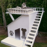 Dog Trivia | Interesting Facts and Dogs | Funny Dog Posts - The Coolest Dog Houses