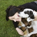 Dog and Puppy Training | Ask the Trainer - My adopted dog is very very clingy please Help