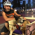 General News | Dog News Articles - Man Takes His 15-year-old dog on an amazing journey