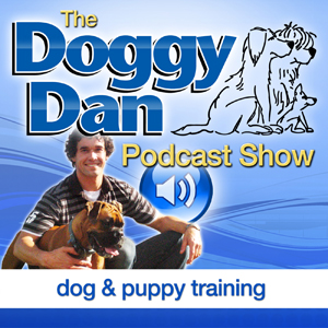 Doggy Dan Podcast
