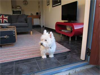Pet Friendly Accommodation - Pet Friendly To Boot!