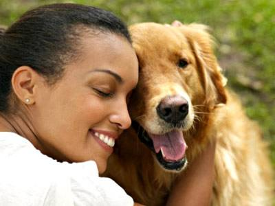 Giving dogs affection - the human and the canine perspective