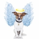 Dog Crematorium | Dog Funerals - Directory