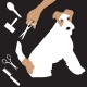 Groomers - Aunty Briar's Dog Grooming And Play Days