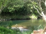 Stunning swimming hole 12ft