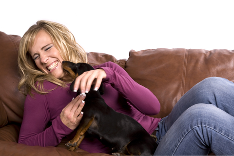 Dog Exercise Routines   Rough Play