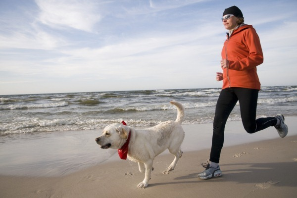 Dog Exercise Routines - Running and Jogging