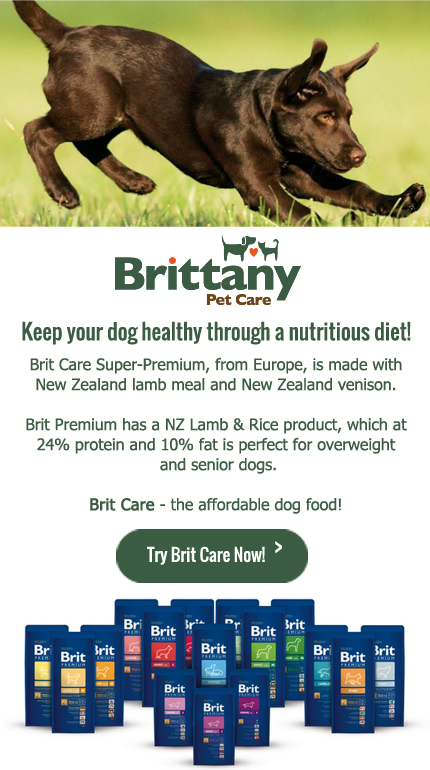 Brittany Pet Care and Dog Nutrition