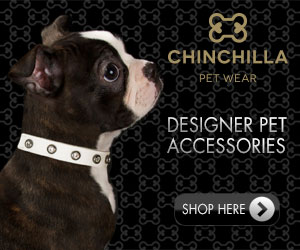 Chinchilla Petwear - Buy Online