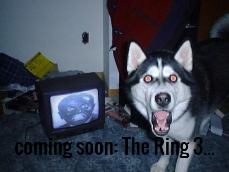 coming soon: The Ring 3...